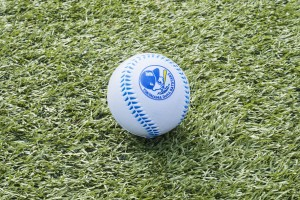 012参考素材【PR】野球グッズ&ポンチョ付きチケット発売(ボール)